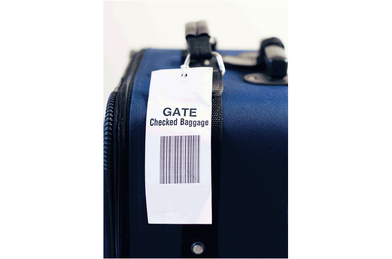 picture about Medical Equipment Luggage Tag Printable referred to as Loop Over Strung Tags - Saito